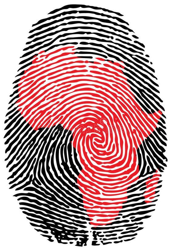 Feminismo Negro versus Mulherismo Africana ,