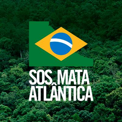 Você sabe a diferença entre Amazônia e Mata Atlântica?